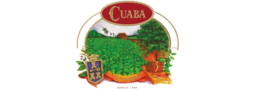 cuaba_kategorie